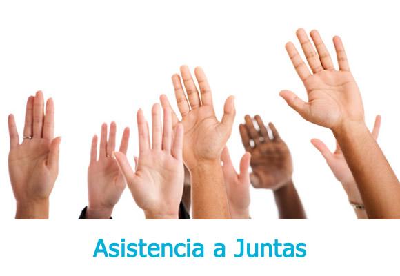 Asistencia a Juntas